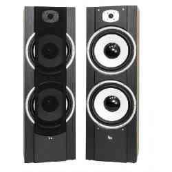 Kolumna głośnikowa VK965B 8R 200-250W VoiceKraft