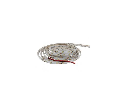 Sznur LED 3528 czerwony w silikonie 12V 24W Talvico odcinek 5cm IP65