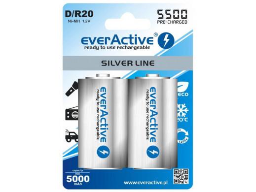 Akumulator everActive Ni-MH R-20 5500 mAh