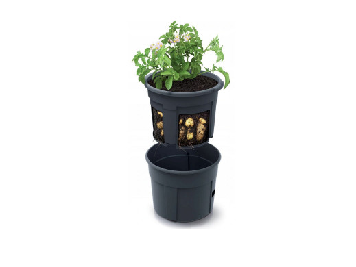 Doniczka do ziemniaków Potato Grower IZIE300