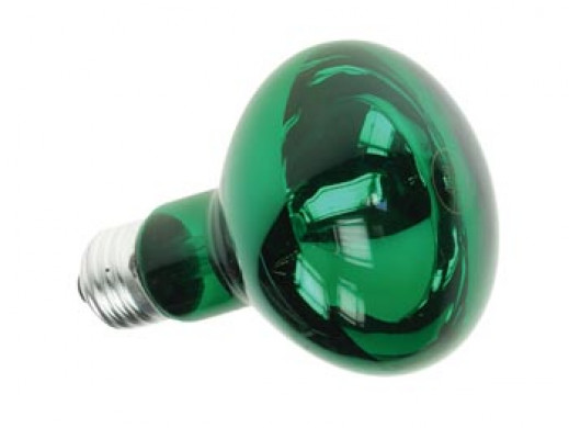 COLOURED SPOT - GREEN 60W