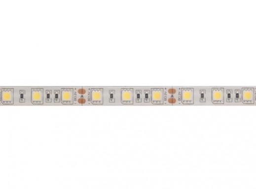 ELASTYCZNA TAŚMA LED - ZIMNY BIAŁY - 300 diod LED - 5 m - 12 V